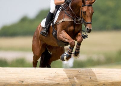 BARBURY17_CAROLINE_HARRIS-7136
