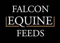 FEF Logo 2